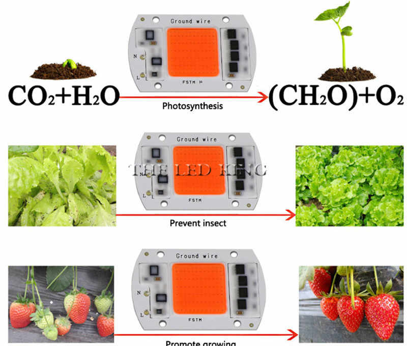1X 10X COB LED Grow Chip Phyto Lamp Full Spectrum 20W 30W 50W LED Diode Grow Lights For Seedlings Indoor DIY Hydroponics AC 220V