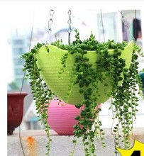 7 colors / D20XH14CM gardening pots PP resin hanging baskets thicker spider pots for outdoor Garden