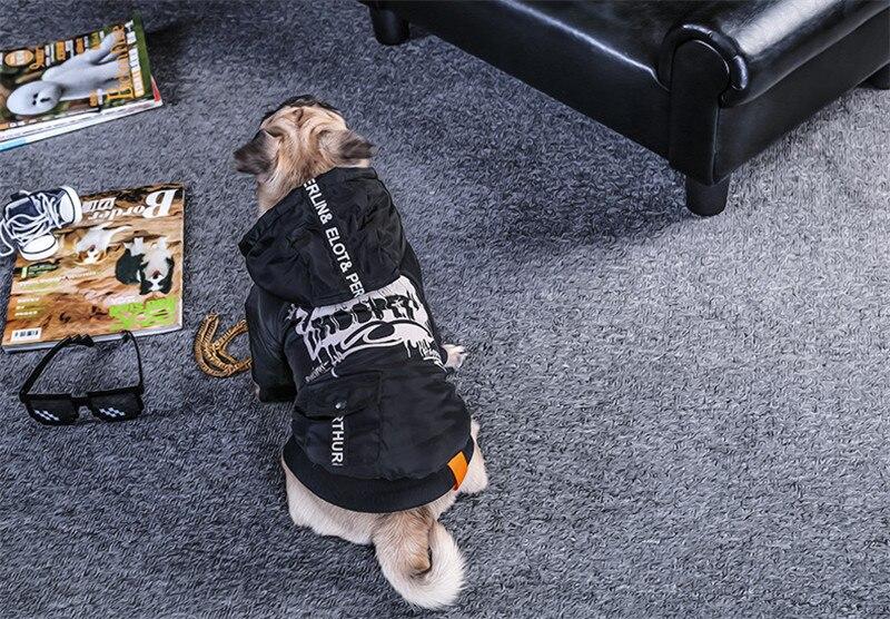 Labrador large dog clothes winter (2)