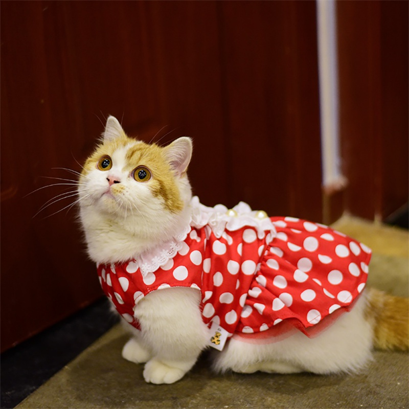 Dresses For Cats Cute Suit Thin Small Dogs Wave Pearl Clothes
