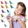 Digi Mascotas Aves Pájaro Cantando Música Eléctrica Juguetes de Aves Con Pila de Botón de Regalo de Navidad Para Niños S20 Color Al Azar