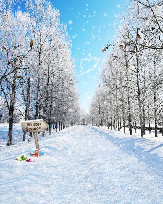 Winter Wonderland Snow Trees Backgrounds For Sale Vinyl