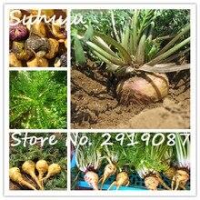 50 семена/мешок Мака Ма Karmarkar семян весной посев весной посадки горшках овощи семена легко выращивать специальный уход