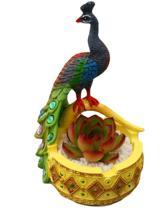 Peacock resin pots Cacti Succulent Plant Pot Flower Planter Mini Garden Design