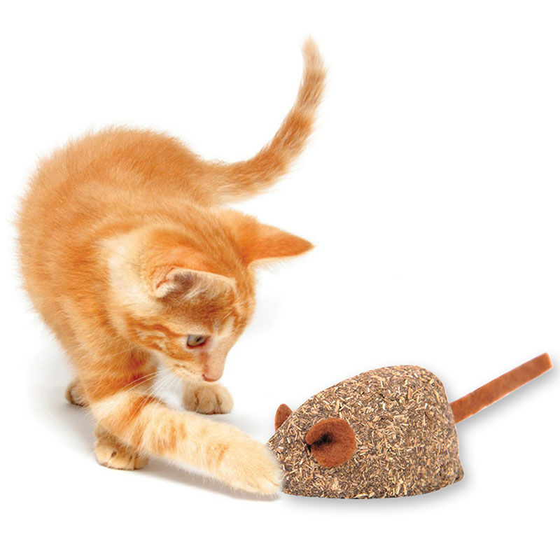 Mice Shape Cat Mouse Mint Ball Play Coated With Catnip Pet Supply Toy Effective Chat