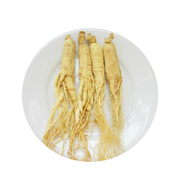 1 kg herbal tea panax dried white ginseng root with tail free shipping 500g famous health care tea taiwan dong ding ginseng oolong tea ginseng tea chinese green natural food