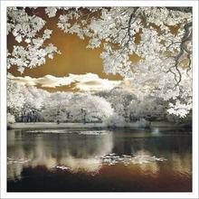 3d diy Алмазная картина зимнее озеро вышивка всенаправленные