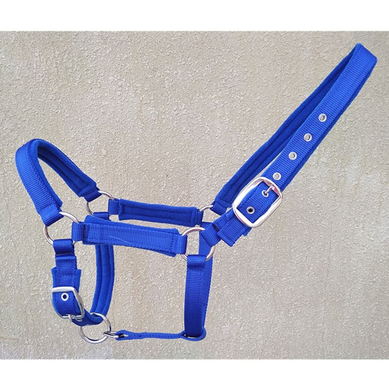 Blue Horse Halters Quality Red PP Webbing Horse Equipment Halter Horse Bridle Halter