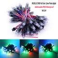 WS2811 2811 IC RGB Полноцветный 12 мм пикселей цифровой адресуемый 5 в 12 В Мечта Цвет LED Pix els модуль IP68 водонепроницаемый точечный свет
