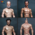 2016 Compatible ZC Toys 1/6 Scale Muscular Figure Body With Russell Ira Crowe Leonardo Wolverine Head  ZC01 ZC02 ZC03