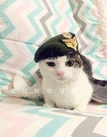 2016 애완 동물 개 모자 고양이 모자 개 beilei 캡 모자 드레스 애완 동물 액세서리