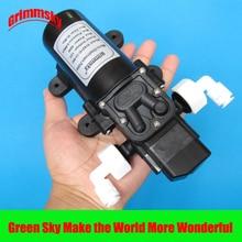 5L/Min 60W booster pump 12v
