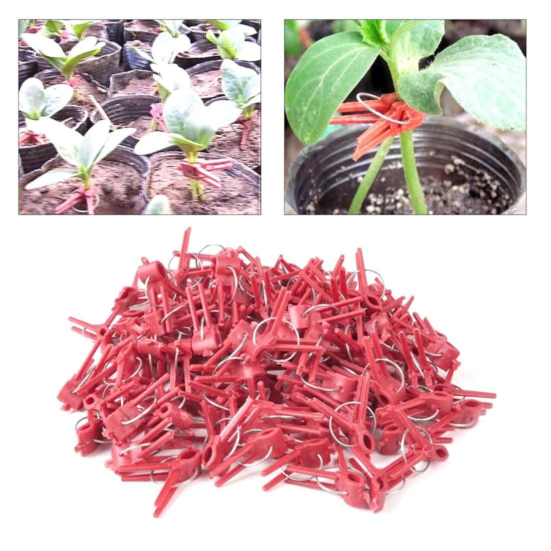 100 шт. прочный пластик прививки зажимы овощ с грядки цветок помидоры лоза кусты растения
