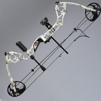 35lbs 65lbs Adjustable Archery Compound Bow Hunting Compound Bows