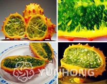 100pcs Novelty of the cucumber seeds Mars fruit African cucumber Bonsai plants Seeds for home & garden Free Shipping