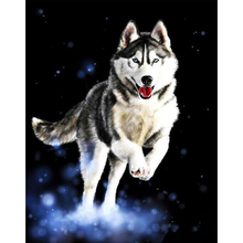 Frameless Huskies Animals DIY Painting By Numbers Hand Painted Oil Painting Modern Wall Art Picture For Home Artwork 40x50cm(China)