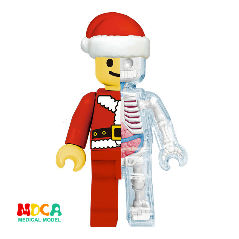 Christmas brick man 4d master puzzle Assembling toy Perspective bone anatomy modelChristmas brick man 4d master puzzle Assembling toy Perspective bone anatomy model