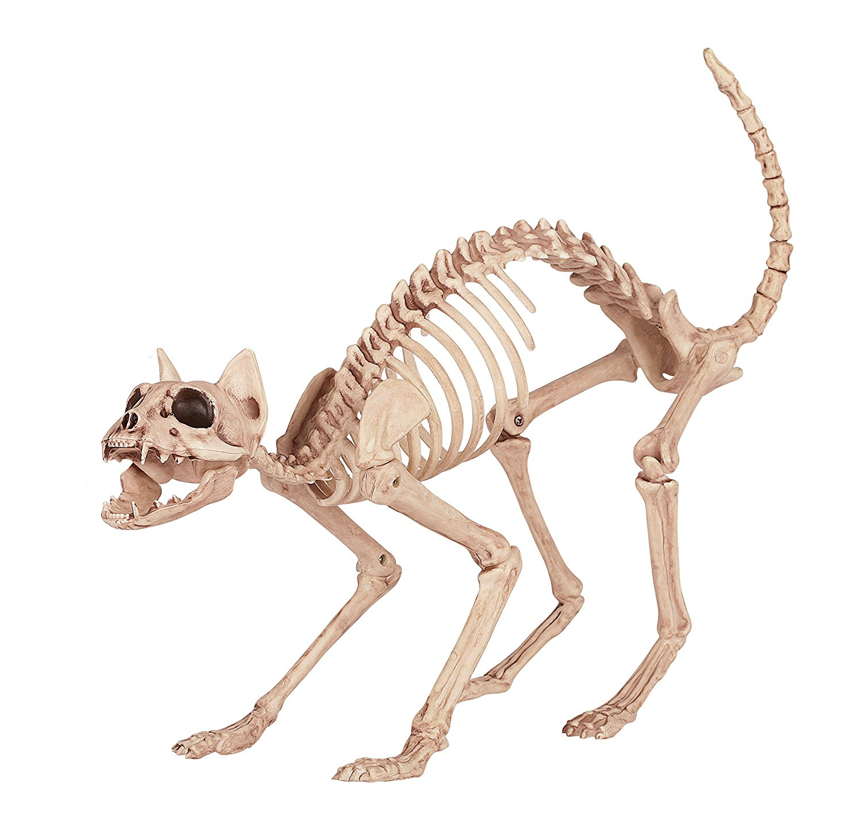 Skeleton Cat 100% Plastic Animal Skeleton Bones For Scary Halloween Party Decoration