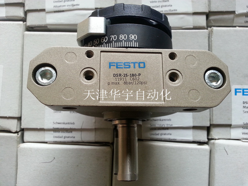 DSR-25-180-P 11911  Germany Festo cylinders bobo choses юбка bobo choses модель 281253496