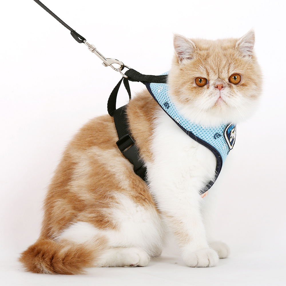Cat harness directions