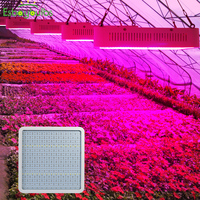 LED Grow Light 800 W planta de semillas lámpara interior Fito Panel Led de espectro completo para plantas cultivo carpa invernadero lechuga tomate de plántulas