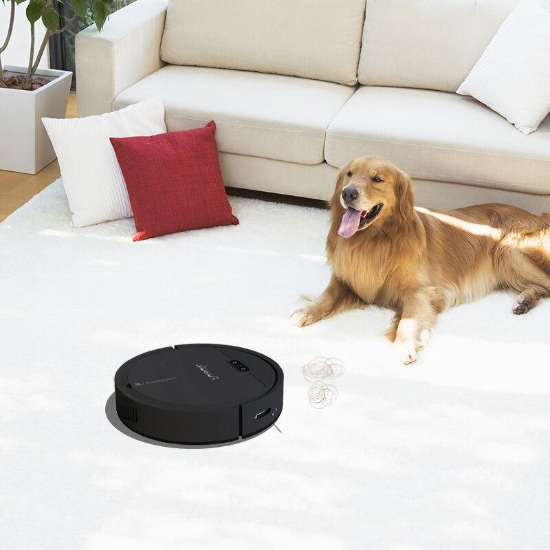 宠物家庭,地毯清洁