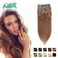 Clip In Human Hair Extension 200g  Straight Human Hair Clip In Thicker  Top Quality Natural Hair Clip in Remy Hair  Color 6#