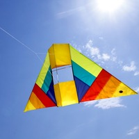 3D Box Kite Flying Single Line Delta Kite with 100m Kite Line String for Kids Adults Outdoor Toy Sports Fun