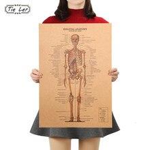 O esqueleto da estrutura do corpo sistema nervoso frente e verso poster bar decoração da casa retro papel kraft adesivo de parede 51x36cm