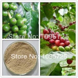 Green Coffee Bean Extract 50% chlorogenic acid HPLC natural green coffee bean extract chlorogenic acid 200g lot