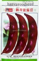 Mix Minimum Order 5 1 Original Pack 10 Red Lentil Seeds Hyacinth Bean Vegetable Seeds