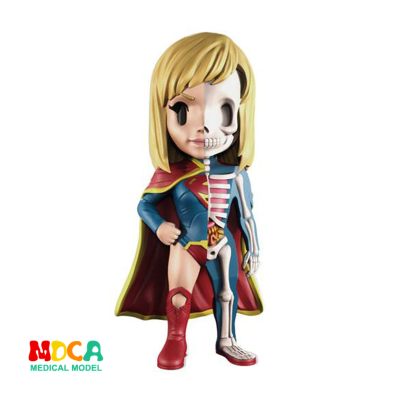 Superwoman 4D XXRAY master Mighty Jaxx Jason Freeny anatomy Cartoon ornament cacti mighty 4d xxray master mighty jaxx jason freeny anatomy cartoon ornament