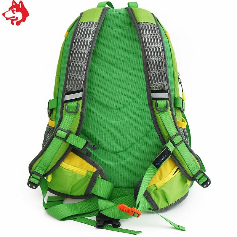 Купить с кэшбэком 28L Green/Orange/Blue children hiking rucksacks  wholesale small waterproof outdoor women climbing trekking camping backpack