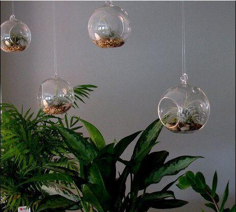 4pcsset Hanging Glass Globe Vaseair Plant Terrarium Setgarden