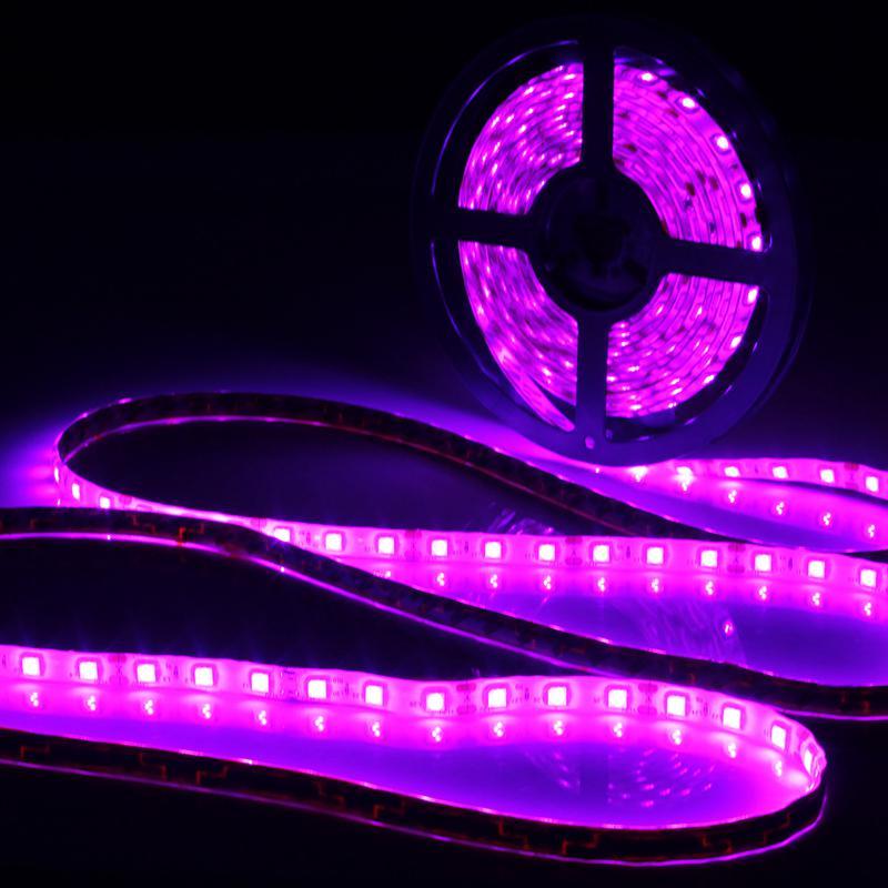 0.5/1/2/3/4/5M Lamp Purple Waterproof IP65 Led Strip Light 12V DC 5050 SMD Black 60 LED Lamp 395-405nm