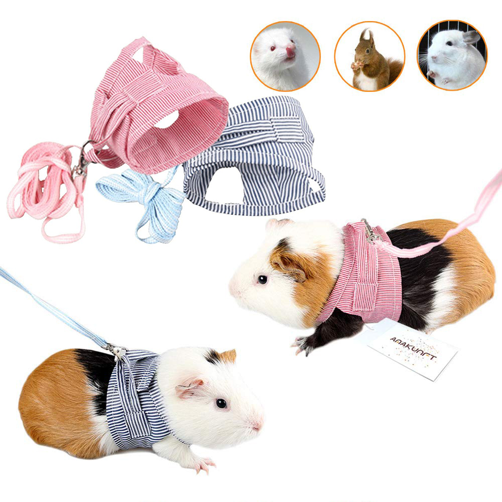 Pig Hamster Vest Harness With Leash Chest Strap Harnesses Ferret Guinea Small Animals Pet Accessories S L D20 in Leashes from Home Garden