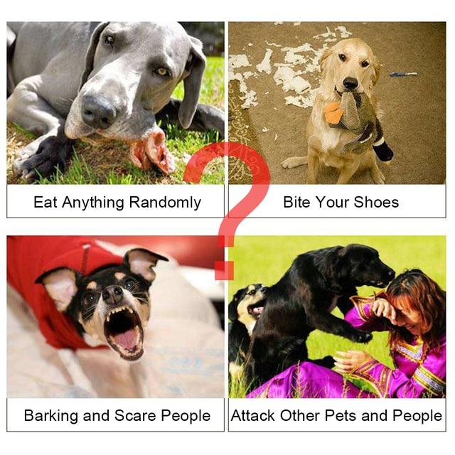 Pet Dog Regolabile Museruola Per Cani Traspirante Piccolo Grande Cane Museruola Anti Bark Bite di Masticazione Del Cane Museruole di Formazione Prodotti per animali domestici