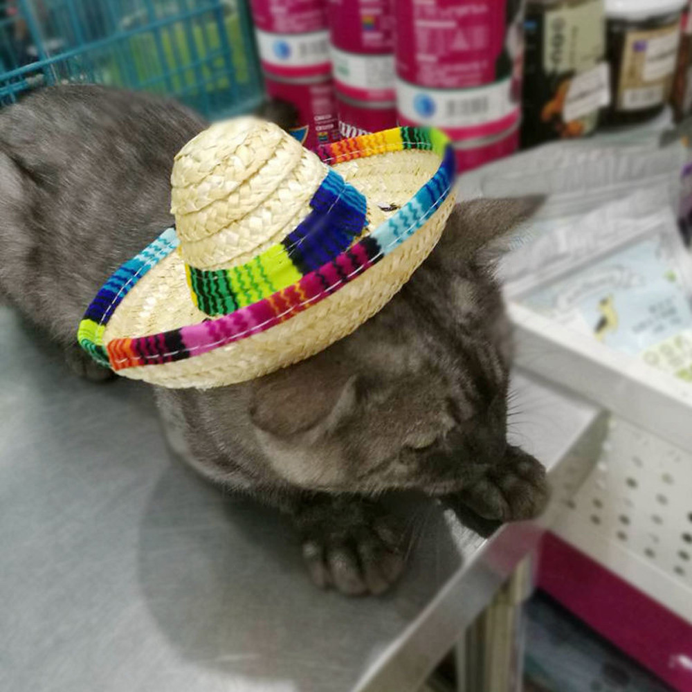 Summer Dog Cat Cap Straw Dogs Sombrero Summer Pet Hat Accessories ... 0ae3093b177b