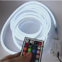 1 10m mini RGB Neon flex,72pcs 5050SMD/m color changing led neon tube with remote controler ,220 240V led sign board tube