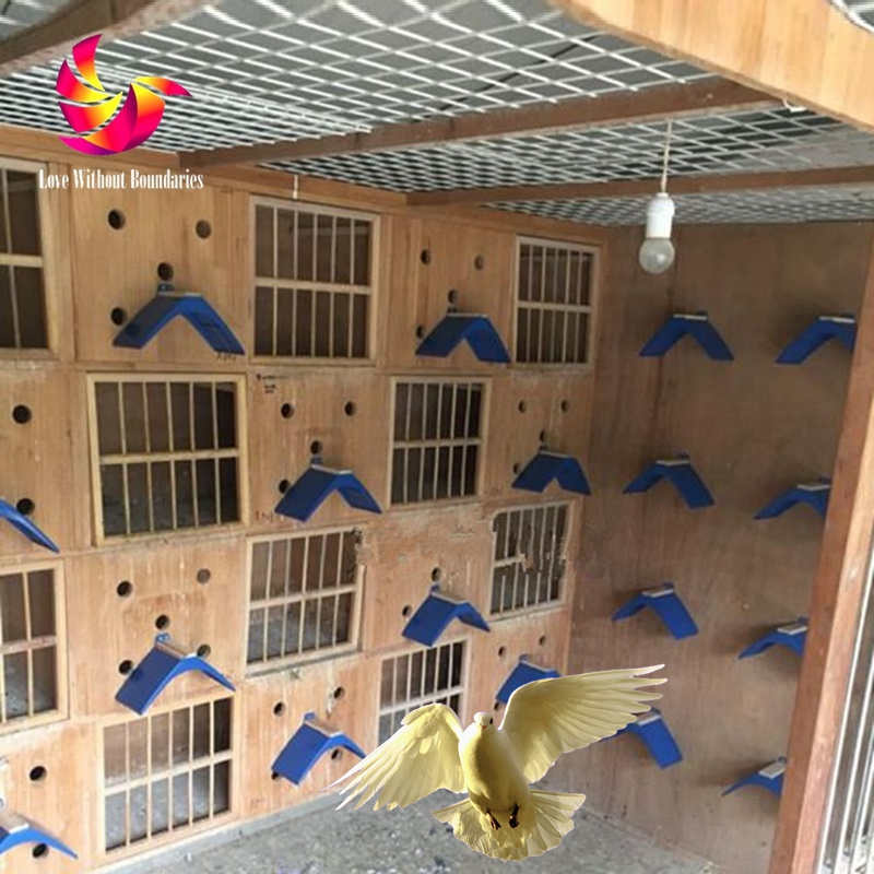 Big Size Real Wood No Slip Bird Habitat Stand, Dove Stand, Pigeon Birds, Pet Nest Accessories, Hamster Climbing Exercise