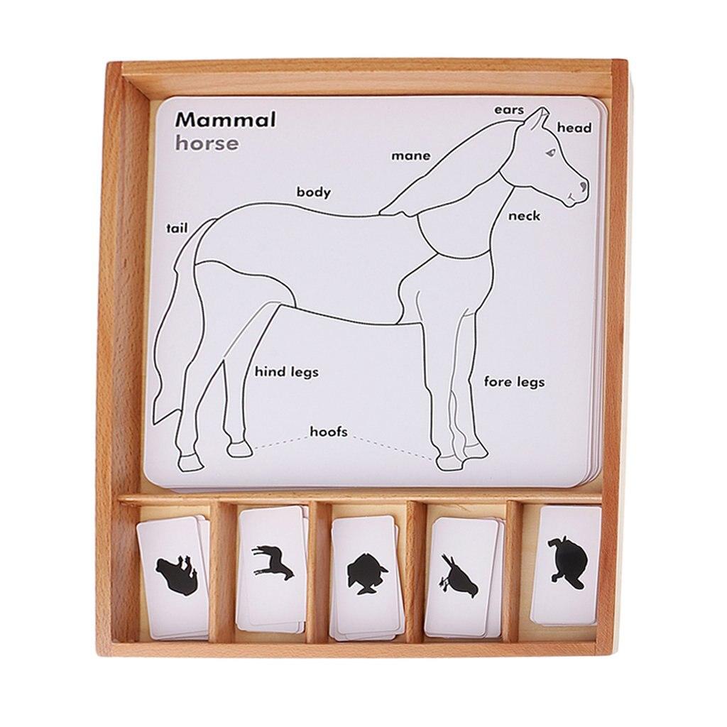 Montessori animaux cartes d'apprentissage avec boîte en bois enseignement aide à l'apprentissage précoce jouets éducatifs pour enfants en bas âge enfants
