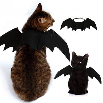 Cat Bat Wings Costume  2
