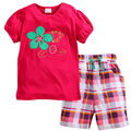 JTS263, Flower, 6sets/lot, Children girls clothing set, 100% Cotton short sleeve T shirt sets for 1-6 year.