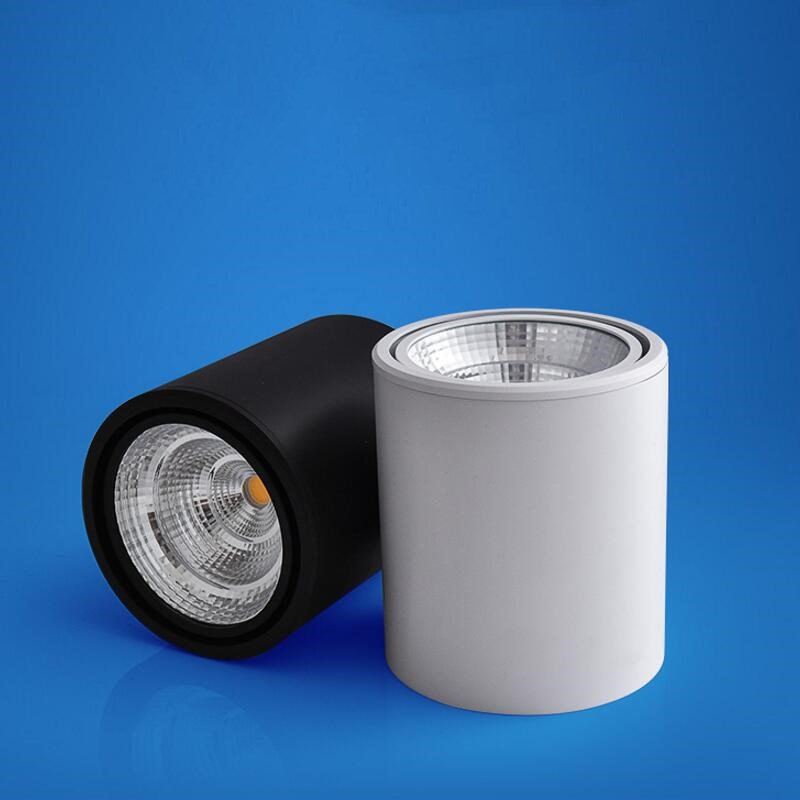 20w Led Surface Mounted: Factory Hot Sale 10W 20W 30W COB Led Downlight Surface