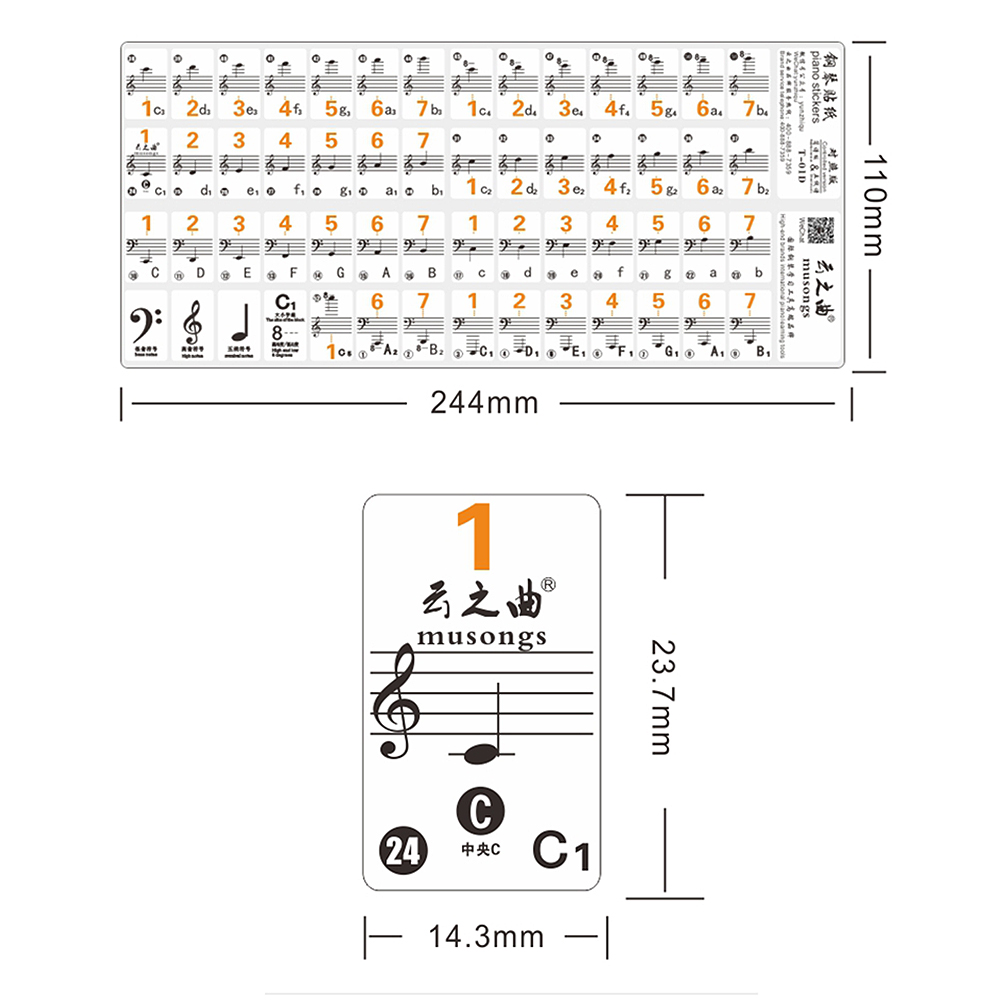Hot Sale Transparent Piano Keyboard Sticker 49 61 Key Electronic Diagram With Notes 88 Stave Note For White Keys In From Sports Entertainment On