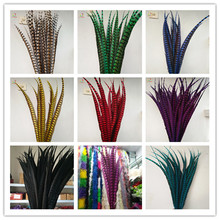 100pcs 70-80cm / 28-32inch Lady Amherst natural Pheasant Tail Feathers pheasant feathers for carnival party decoration