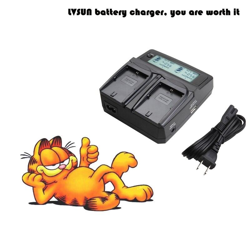 LVSUN Camera Battery NB-10L NB10L Dual Car/AC Charger for Canon PowerShot SX60 HS, SX50 HS, SX40 HS, G15 G16 G1 X LCD Display