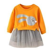 Baby Girl Clothes Cartoon Princess Sweatshirt Dress