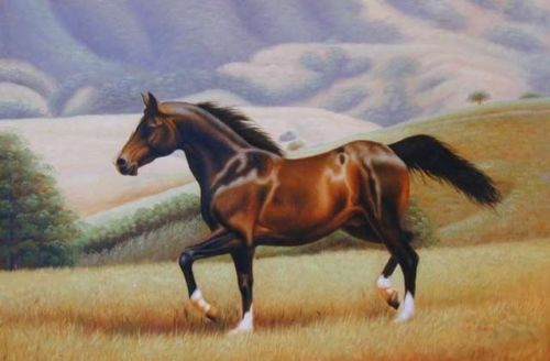 HIGH QUALITY HAND PAINTED ANIMAL OIL PAINTING ON CANVAS : HORSE 24X36