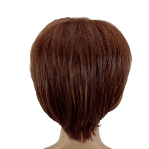 Image 5 - HAIRJOY Man  Layered Synthetic Hair Wig  Short  Brown  Wigs Free Shipping